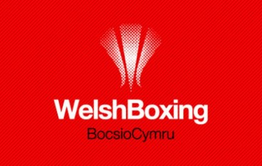 How many medals will Team Wales' boxers win?